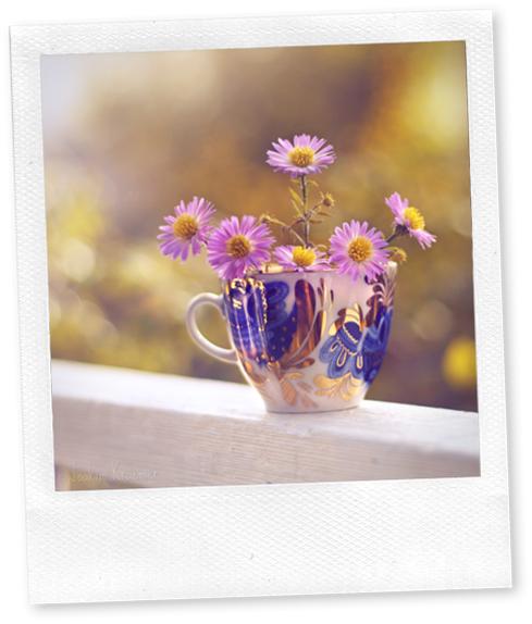 94315812_Fresh_autumn_morning_by_Healzo
