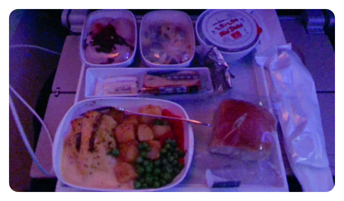 Food in Dubai to USA flights
